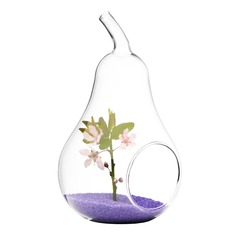 Pear Shaped Glass Vase
